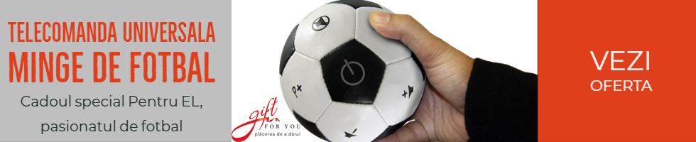 Campanie de reduceri Telecomanda Universala Minge Fotbal