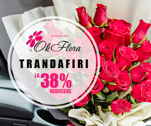 Campanie de reduceri Trandafiri la 38% Reducere