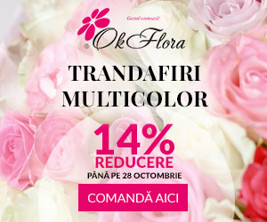 Campanie de reduceri Reducere 14% la Trandafiri Multicolori