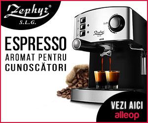 Campanie de reduceri Espressor ZEPHYR ZP 1171 F