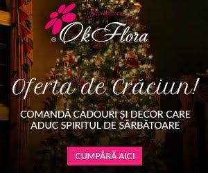 Campanie de reduceri Oferta de Crăciun