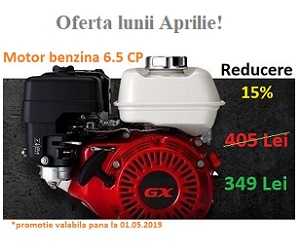 Campanie de reduceri Motor 6.5 cp