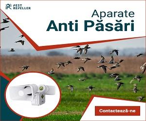 Campanie de reduceri Anti pasari 300 x 250