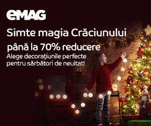 Campanie de reduceri Decoratiuni si brazi de Craciun, 11-20.12.2019
